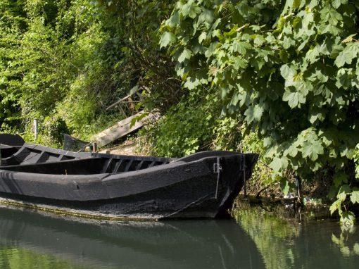 Le marais audomarois, labyrinthe d'eau et de nature (40min)